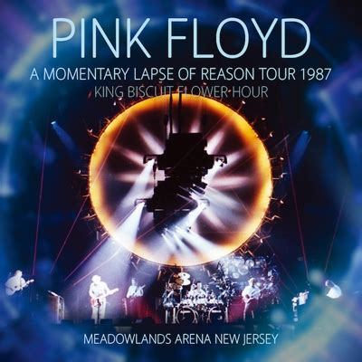Momentary Lapse Of Reason Tour 1987 King Biscuit Flower Hour (2CD) : Pink Floyd | HMV