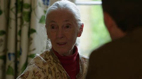 Jane Goodall: The Chimpanzee Who Died of a Broken Heart