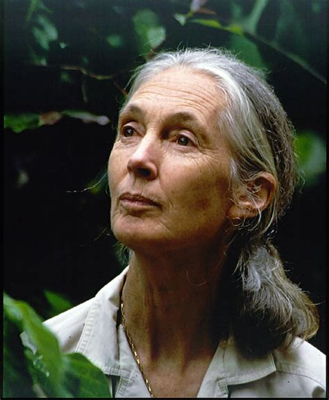 """Jane Goodall at 80: """"Make the world a better place"""" - G"""